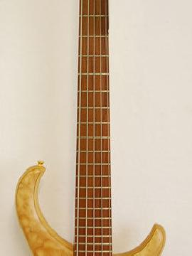 Alembic Excel 5 String Bass - Showroom