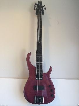 Modulus Quantum 5 Sweetspot Bass Guitar sweet spot five string with Hard Case