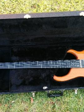 Modulus Quantum Fretless 5-String Electric Bass w/case!!