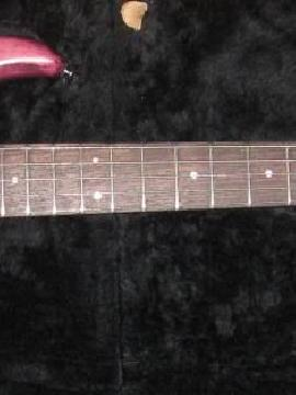 Pedulla Rapture 5 string with hard case