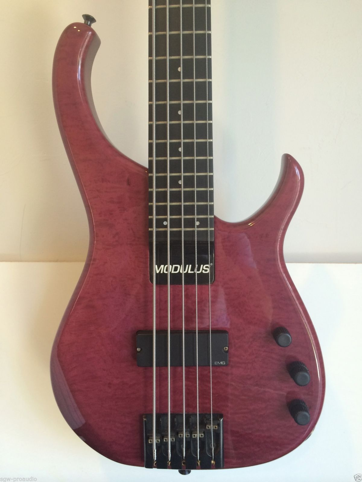 modulus quantum 5 sweetspot bass guitar sweet spot five string with hard case. Black Bedroom Furniture Sets. Home Design Ideas